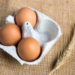 Hofmarkt Querbeet Eier