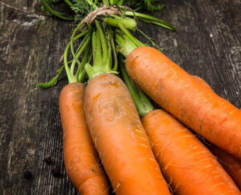 Hofmarkt Querbeet Karotten